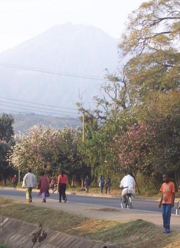 Vue sur le Mont Meru - Arusha